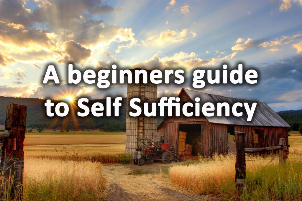 Beginners guide to self sufficiency