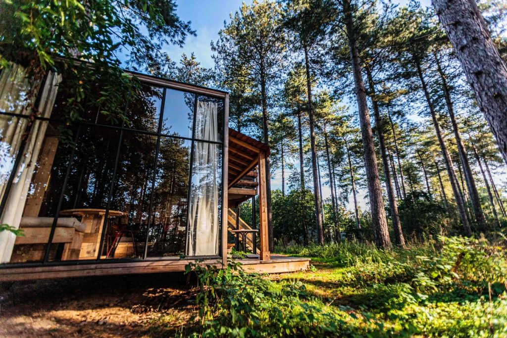 Forest eco home
