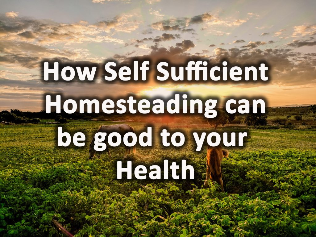 Homesteading good for your health