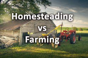 Homesteading verses Farming