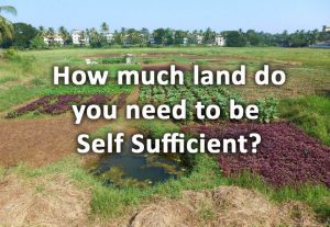How much land does it take to be self sufficient