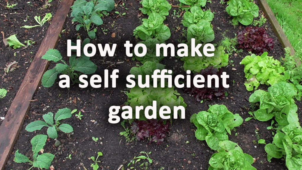 How to make a self sufficient garden